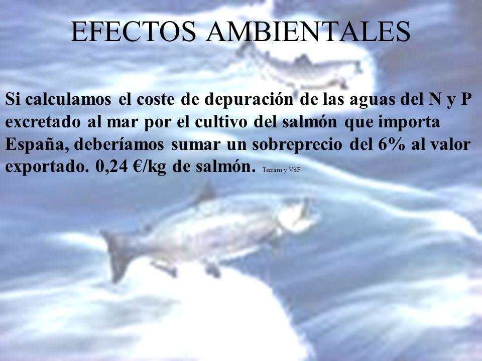 EFECTOS AMBIENTALES Si calculamos el coste de depuración de las aguas del N y P excretado al mar por el cultivo del salmón que importa España, debería