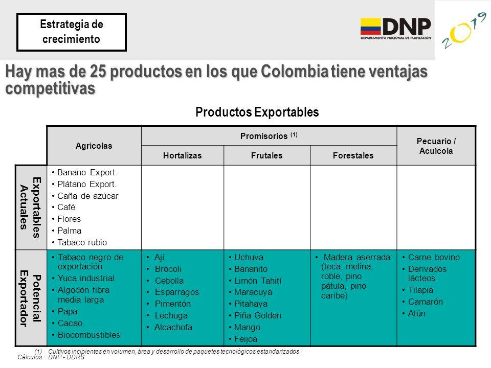 Agrícolas Promisorios (1) Pecuario / Acuícola HortalizasFrutalesForestales Exportables Actuales Banano Export. Plátano Export. Caña de azúcar Café Flo