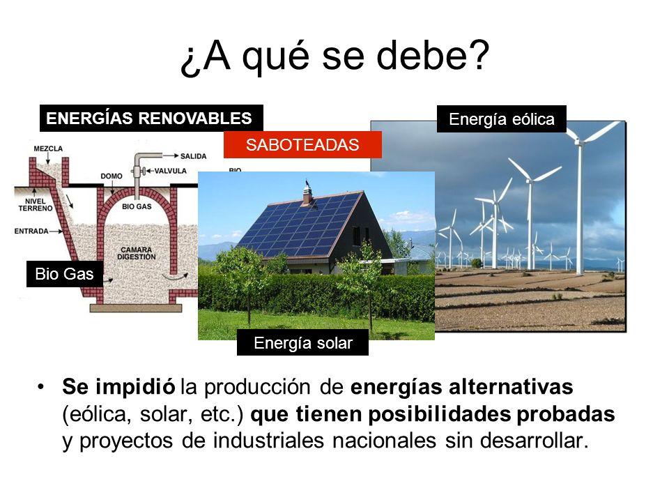 Se impidió la producción de energías alternativas (eólica, solar, etc.) que tienen posibilidades probadas y proyectos de industriales nacionales sin desarrollar.