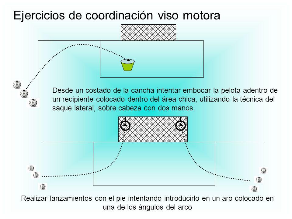 Ejercicios de coordinación viso motora Desde un costado de la cancha intentar embocar la pelota adentro de un recipiente colocado dentro del área chic