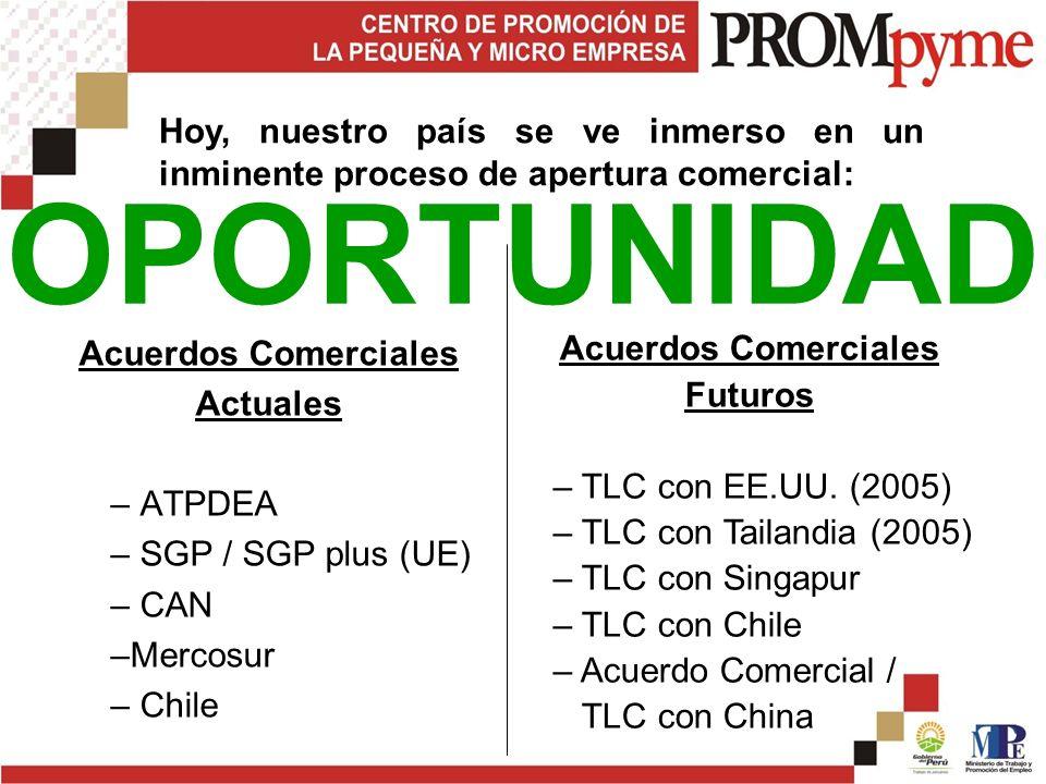 Acuerdos Comerciales Actuales – ATPDEA – SGP / SGP plus (UE) – CAN –Mercosur – Chile Acuerdos Comerciales Futuros – TLC con EE.UU.