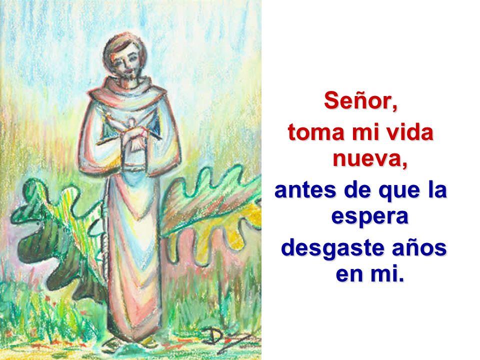 Señor, toma mi vida nueva, antes de que la espera desgaste años en mi. desgaste años en mi.