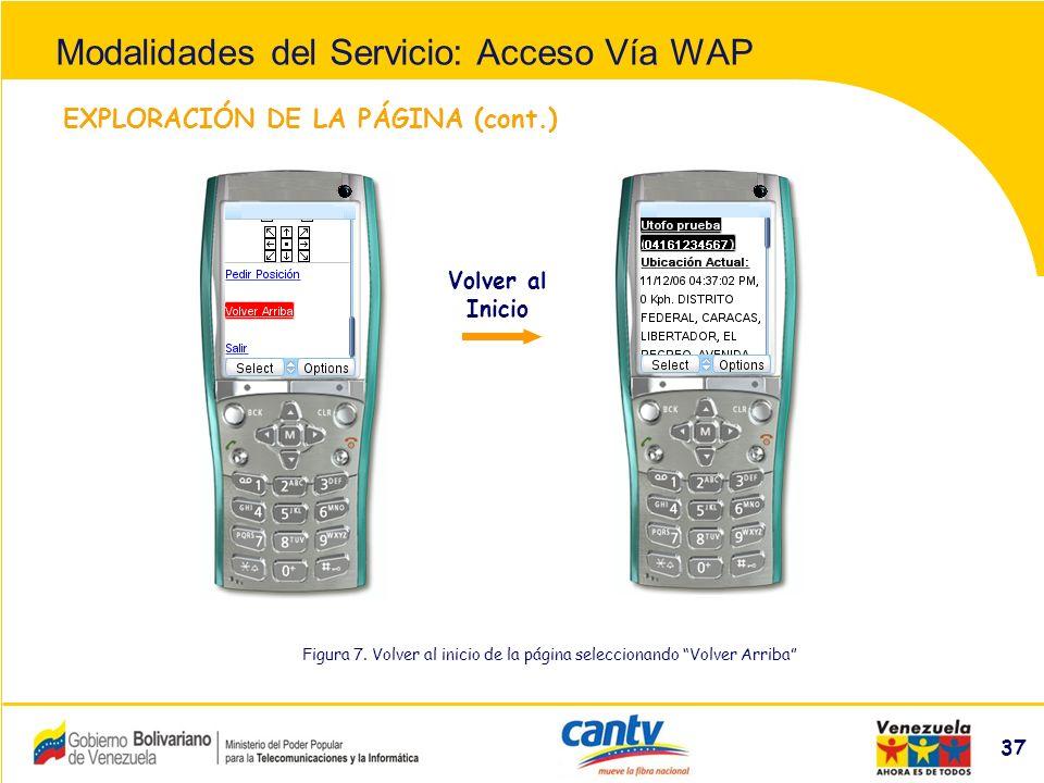 Compañía Anónima Nacional Teléfonos de Venezuela (NYSE:VNT) 37 EXPLORACIÓN DE LA PÁGINA (cont.) Figura 7.
