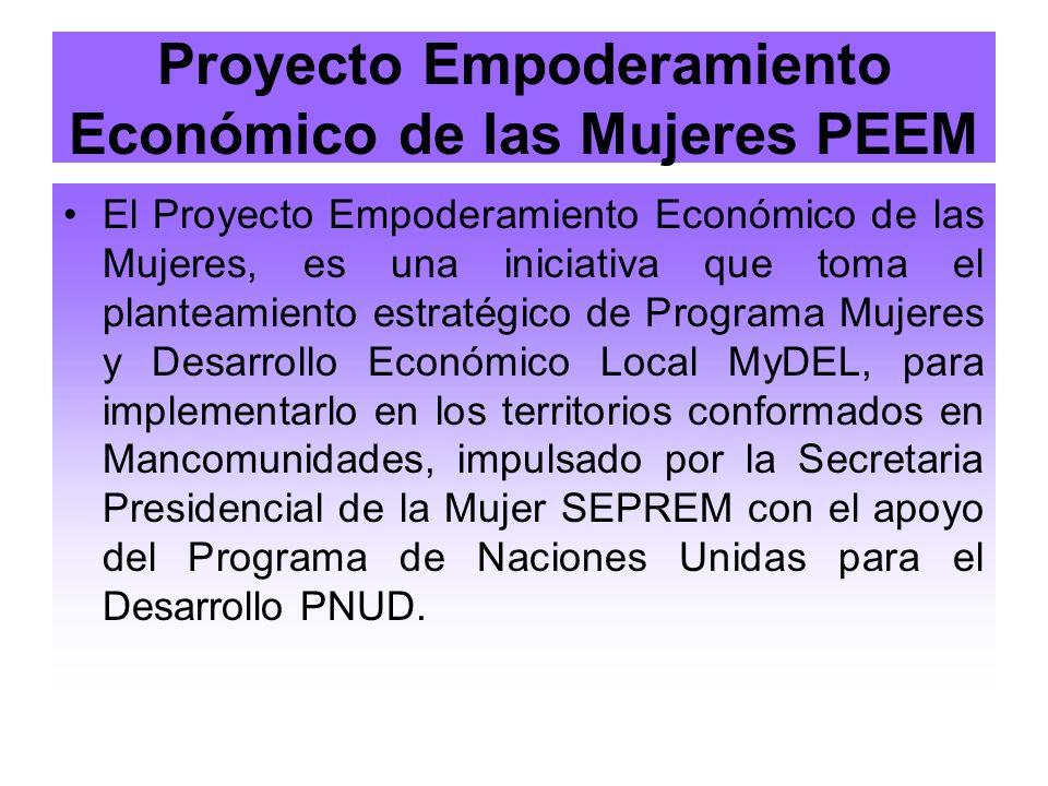 Proyecto Empoderamiento Económico de las Mujeres PEEM El Proyecto Empoderamiento Económico de las Mujeres, es una iniciativa que toma el planteamiento