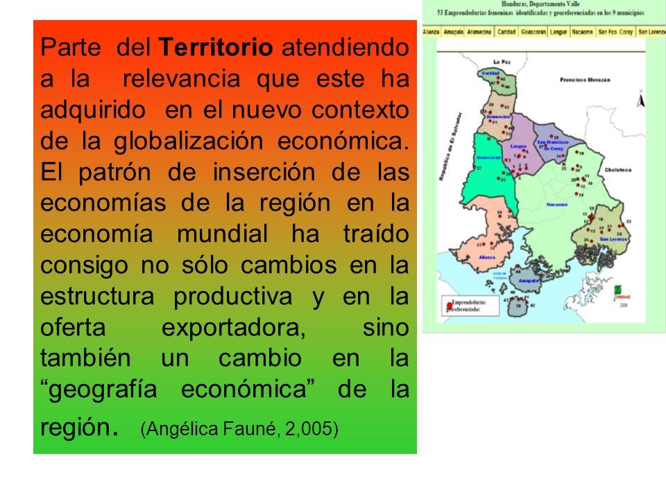 Parte del Territorio atendiendo a la relevancia que este ha adquirido en el nuevo contexto de la globalización económica. El patrón de inserción de la