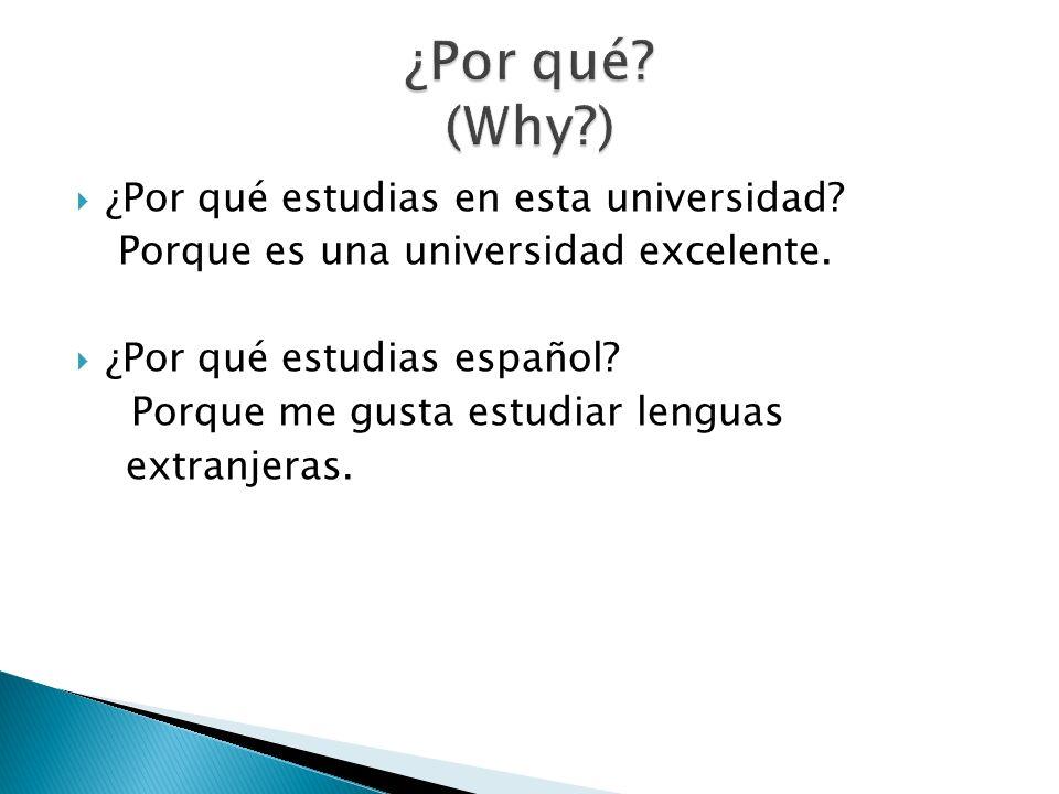 ¿Por qué estudias en esta universidad? Porque es una universidad excelente. ¿Por qué estudias español? Porque me gusta estudiar lenguas extranjeras.