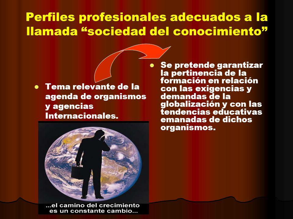 Perfiles profesionales adecuados a la llamada sociedad del conocimiento Tema relevante de la agenda de organismos y agencias Internacionales. Se prete