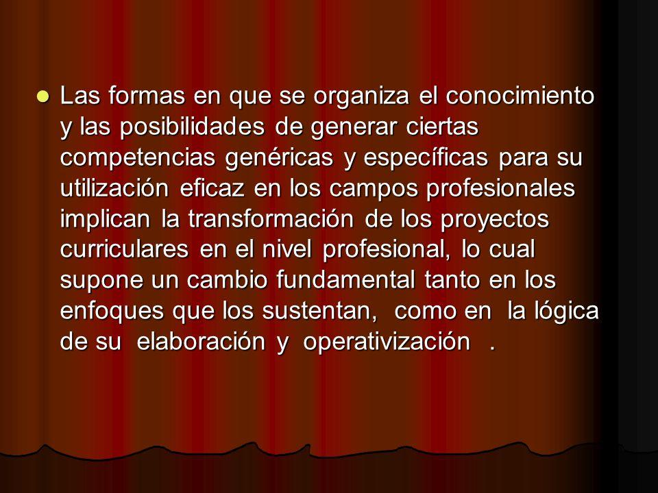 Las formas en que se organiza el conocimiento y las posibilidades de generar ciertas competencias genéricas y específicas para su utilización eficaz e