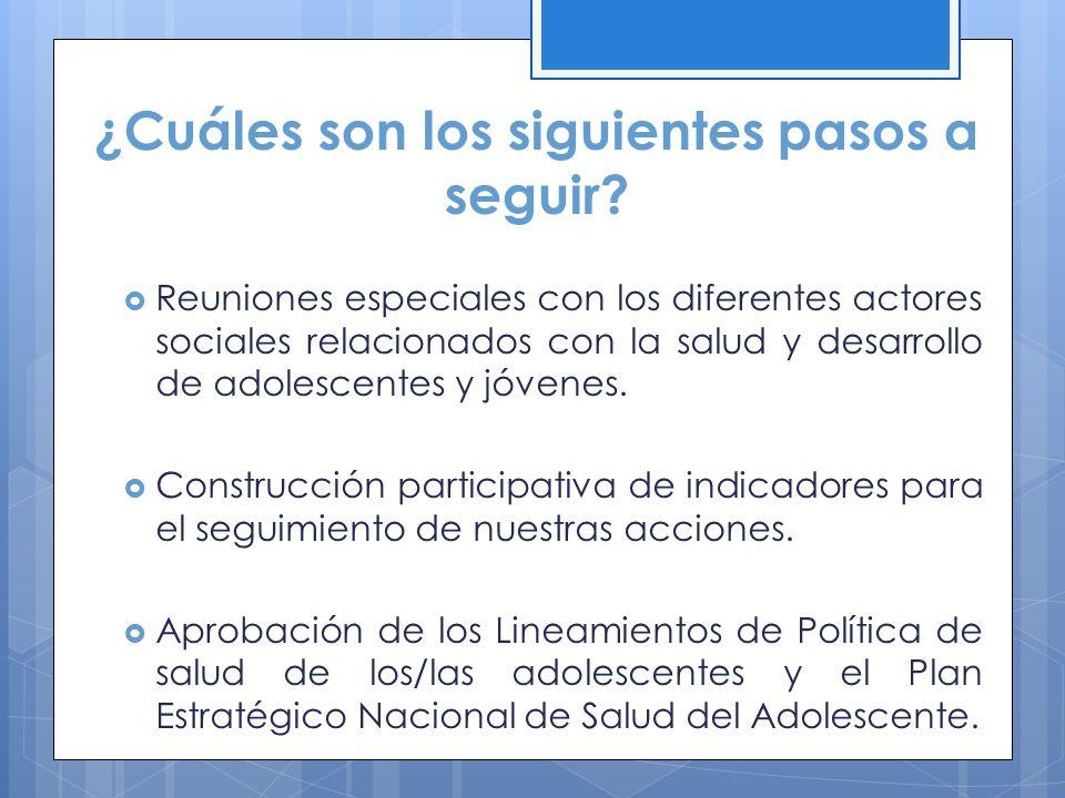 ¿Cuáles son los siguientes pasos a seguir? Reuniones especiales con los diferentes actores sociales relacionados con la salud y desarrollo de adolesce