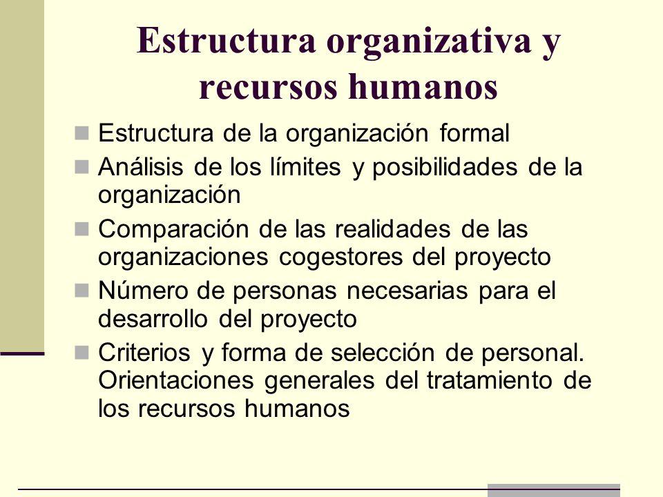 Estructura organizativa y recursos humanos Estructura de la organización formal Análisis de los límites y posibilidades de la organización Comparación
