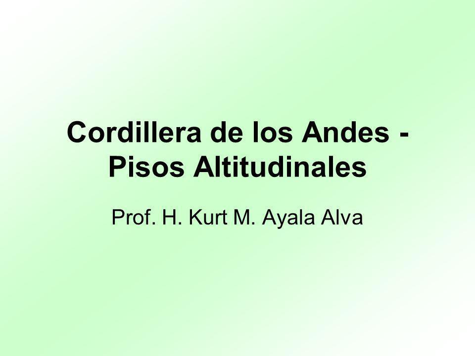Cordillera de los Andes - Pisos Altitudinales Prof. H. Kurt M. Ayala Alva