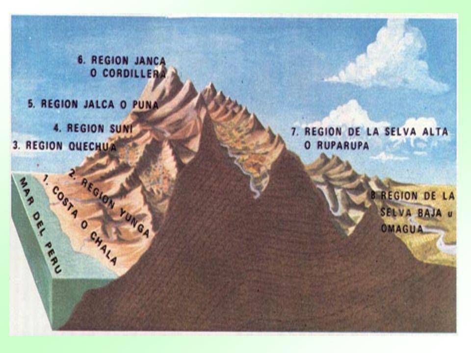 COSTA O CHALA Ubicación: 0 a 500 m.s.n.m.Significado: tupido o acolchado.