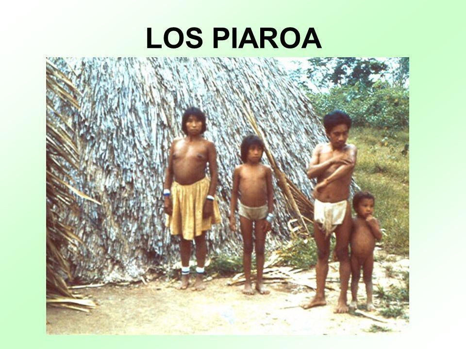 LOS PIAROA
