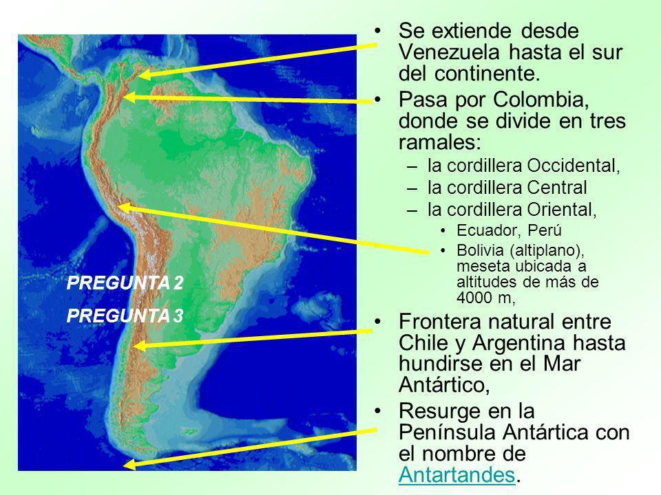 Se extiende desde Venezuela hasta el sur del continente. Pasa por Colombia, donde se divide en tres ramales: –la cordillera Occidental, –la cordillera