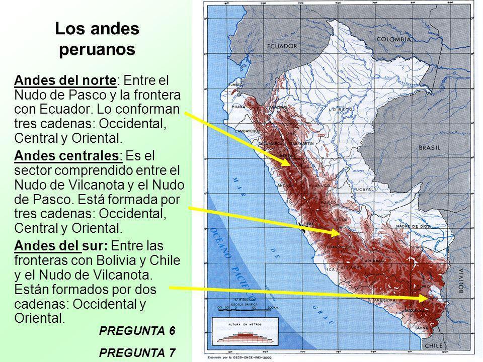 Los andes peruanos Andes del norte: Entre el Nudo de Pasco y la frontera con Ecuador. Lo conforman tres cadenas: Occidental, Central y Oriental. Andes