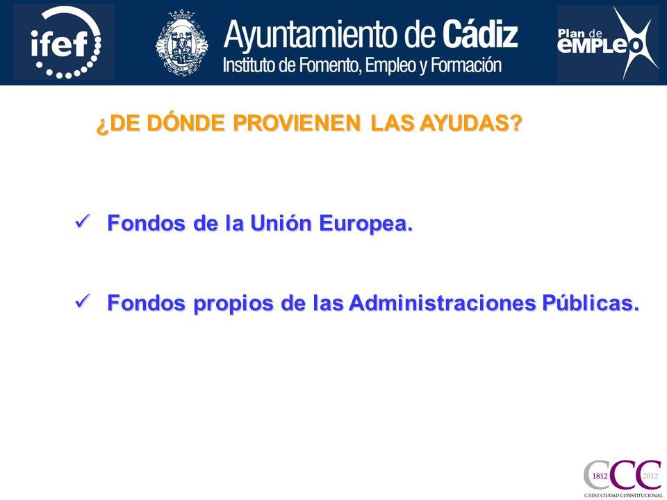 ¿DE DÓNDE PROVIENEN LAS AYUDAS. Fondos de la Unión Europea.