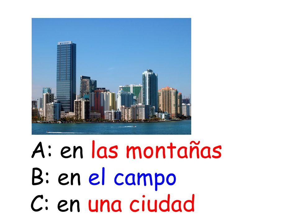 A: en las montañas B: en el campo C: en una ciudad