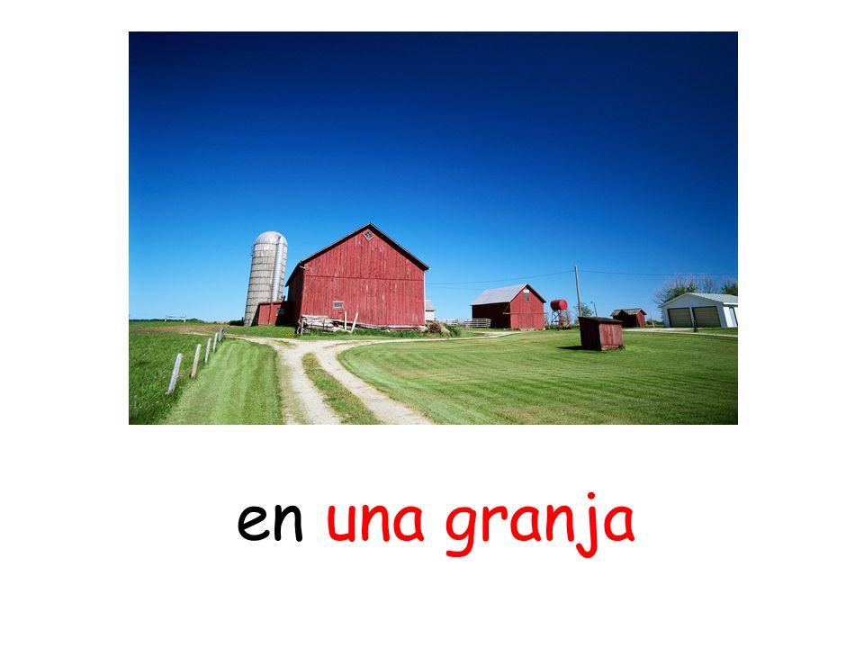en una granja