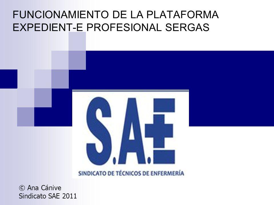 FUNCIONAMIENTO DE LA PLATAFORMA EXPEDIENT-E PROFESIONAL SERGAS © Ana Cánive Sindicato SAE 2011