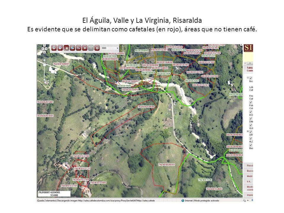 El Águila, Valle y La Virginia, Risaralda Es evidente que se delimitan como cafetales (en rojo), áreas que no tienen café.