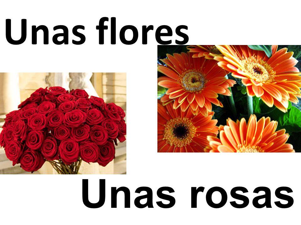 Unas rosas Unas flores
