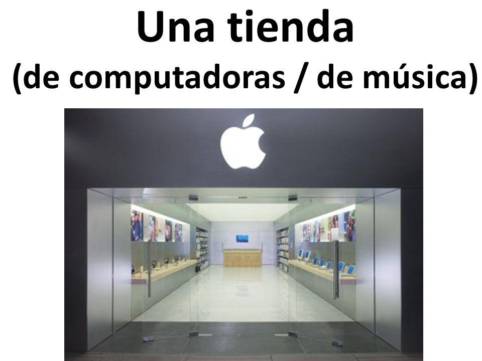 Una tienda (de computadoras / de música)