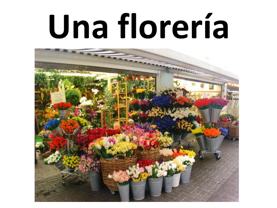 Una florería