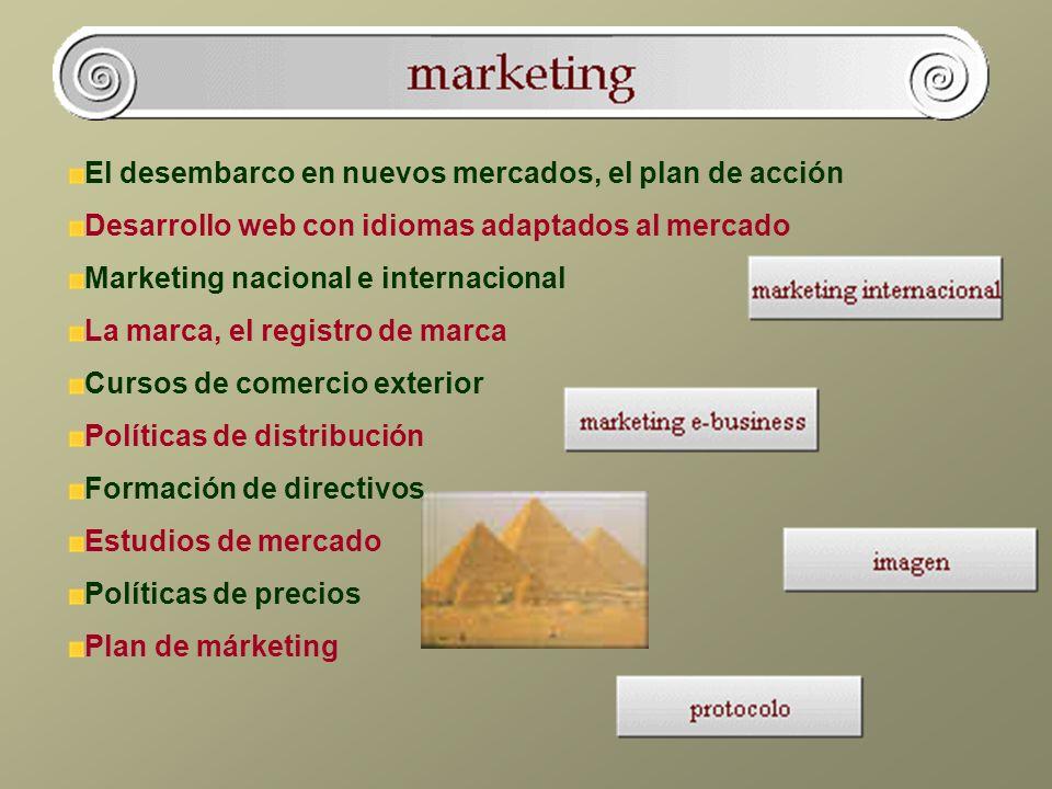 El desembarco en nuevos mercados, el plan de acción Desarrollo web con idiomas adaptados al mercado Marketing nacional e internacional La marca, el registro de marca Cursos de comercio exterior Políticas de distribución Formación de directivos Estudios de mercado Políticas de precios Plan de márketing