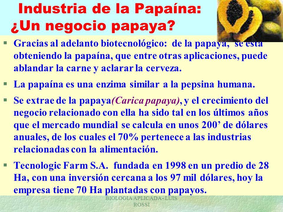 BIOLOGIA APLICADA - LUIS ROSSI Industria de la Papaína: ¿Un negocio papaya? §Gracias al adelanto biotecnológico: de la papaya, se está obteniendo la p