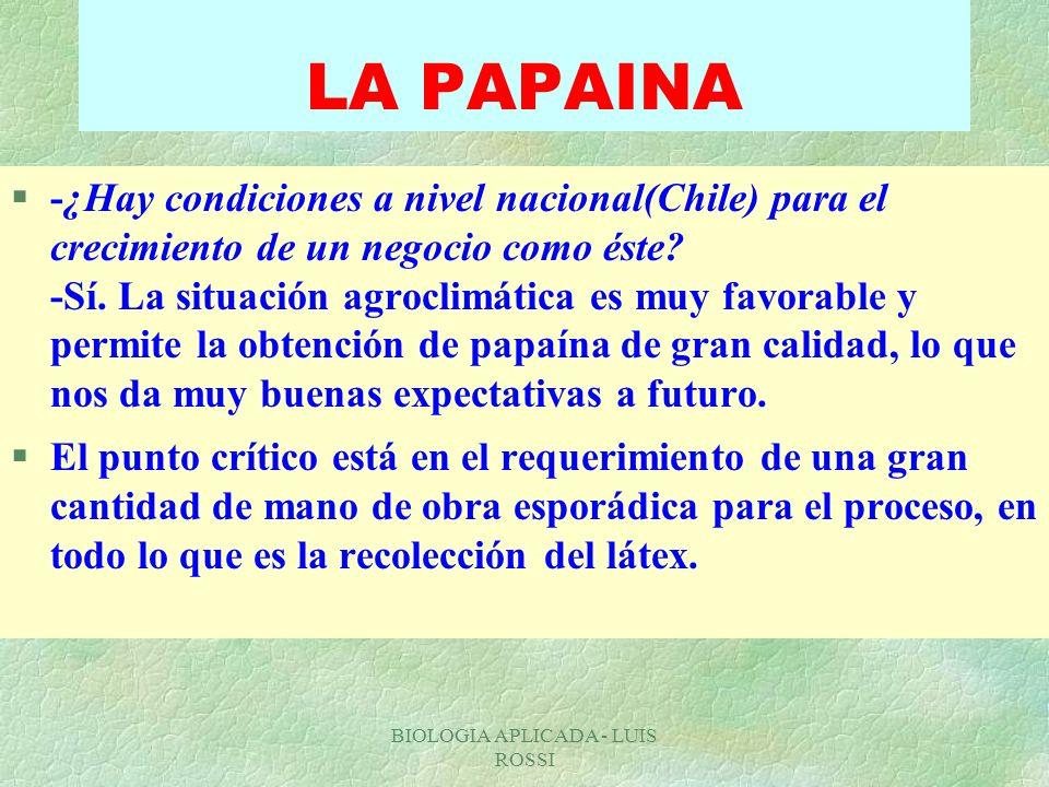 BIOLOGIA APLICADA - LUIS ROSSI LA PAPAINA §-¿Hay condiciones a nivel nacional(Chile) para el crecimiento de un negocio como éste? -Sí. La situación ag