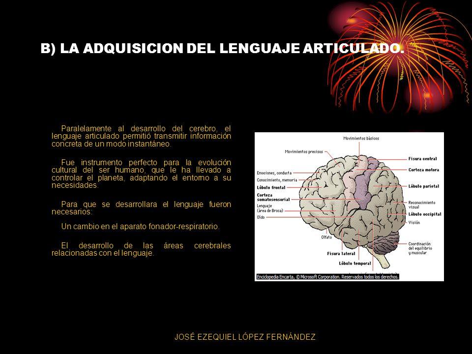 B) LA ADQUISICION DEL LENGUAJE ARTICULADO. Paralelamente al desarrollo del cerebro, el lenguaje articulado permitió transmitir información concreta de