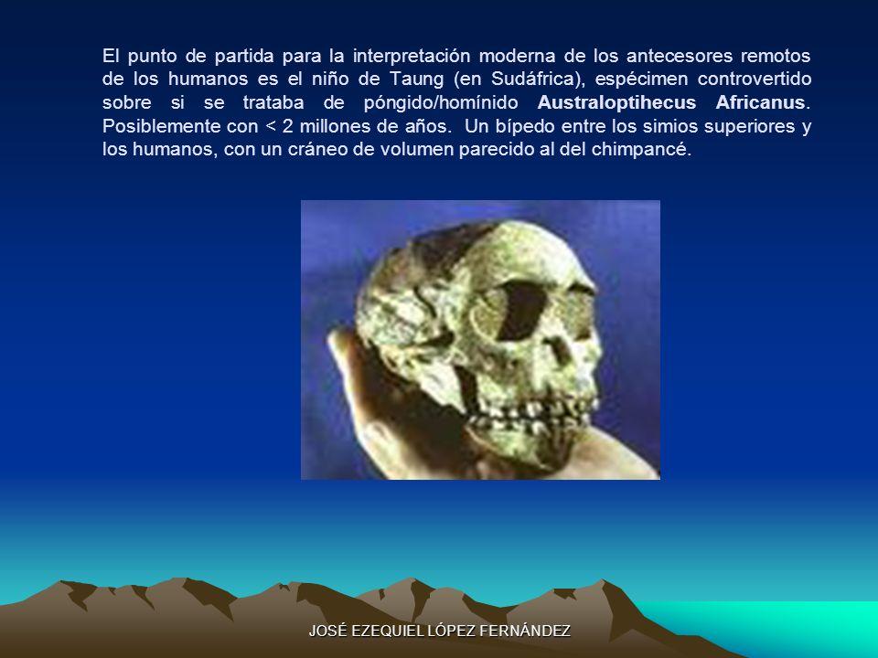 El punto de partida para la interpretación moderna de los antecesores remotos de los humanos es el niño de Taung (en Sudáfrica), espécimen controverti
