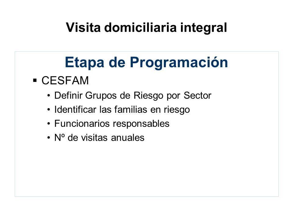 Visita domiciliaria integral Etapa de Programación CESFAM Definir Grupos de Riesgo por Sector Identificar las familias en riesgo Funcionarios responsa