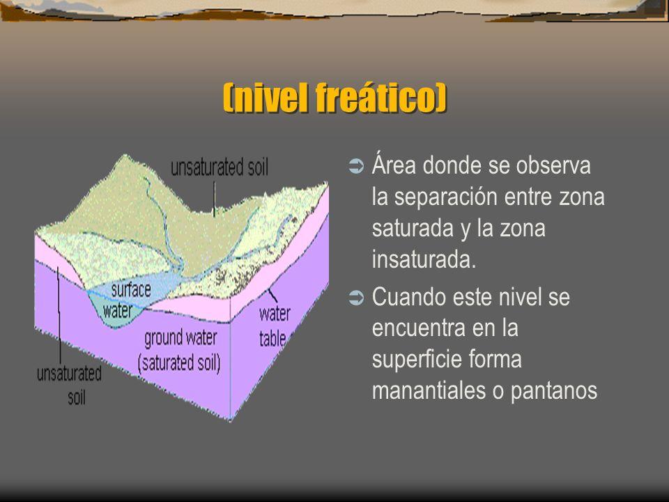 (nivel freático) Área donde se observa la separación entre zona saturada y la zona insaturada. Cuando este nivel se encuentra en la superficie forma m