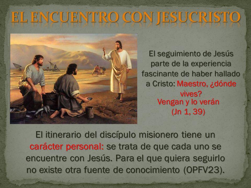 El seguimiento de Jesús parte de la experiencia fascinante de haber hallado a Cristo: Maestro, ¿dónde vives.