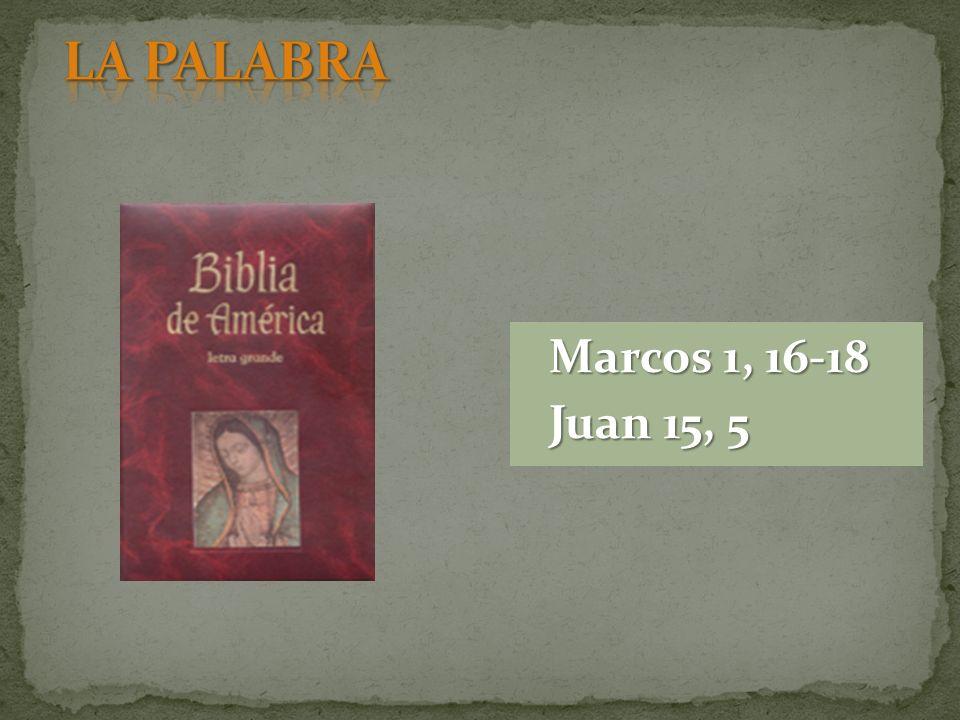 Marcos 1, 16-18 Juan 15, 5
