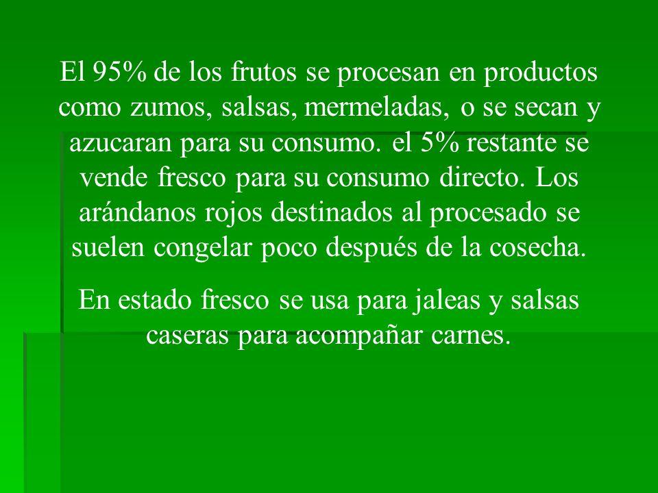 El 95% de los frutos se procesan en productos como zumos, salsas, mermeladas, o se secan y azucaran para su consumo. el 5% restante se vende fresco pa