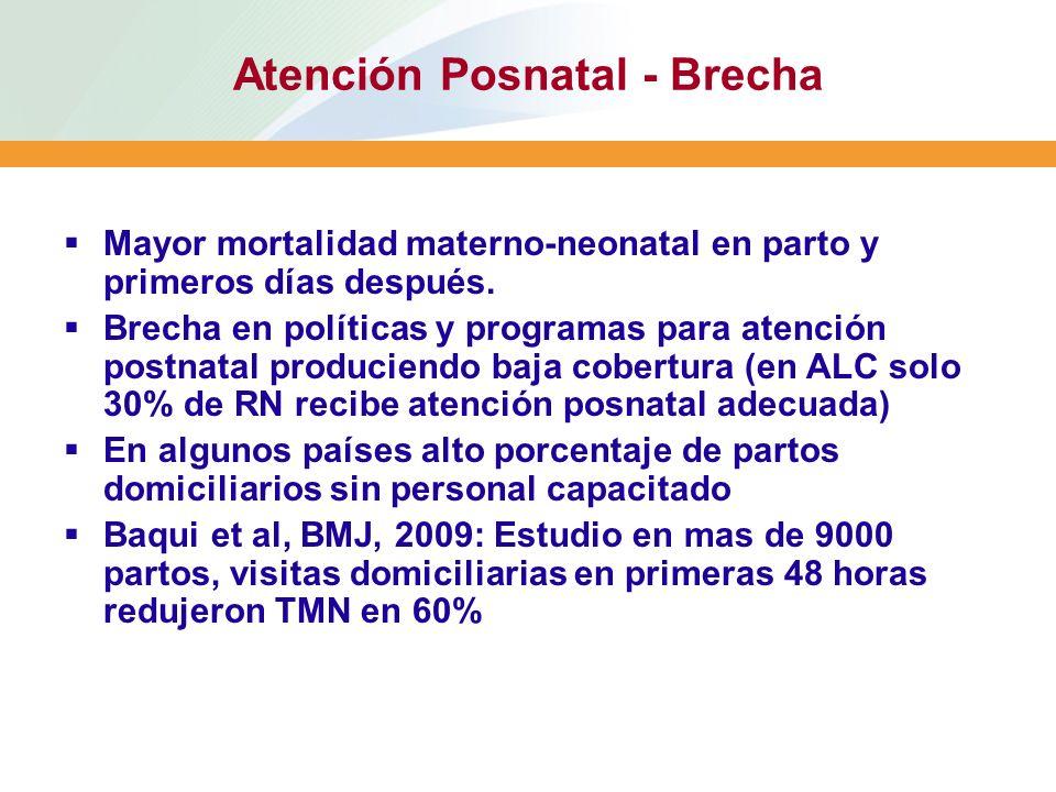 Atención Posnatal - Brecha Mayor mortalidad materno-neonatal en parto y primeros días después. Brecha en políticas y programas para atención postnatal