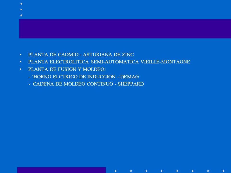 PLANTA DE CADMIO - ASTURIANA DE ZINC PLANTA ELECTROLITICA SEMI-AUTOMATICA VIEILLE-MONTAGNE PLANTA DE FUSION Y MOLDEO: - ´HORNO ELCTRICO DE INDUCCION -