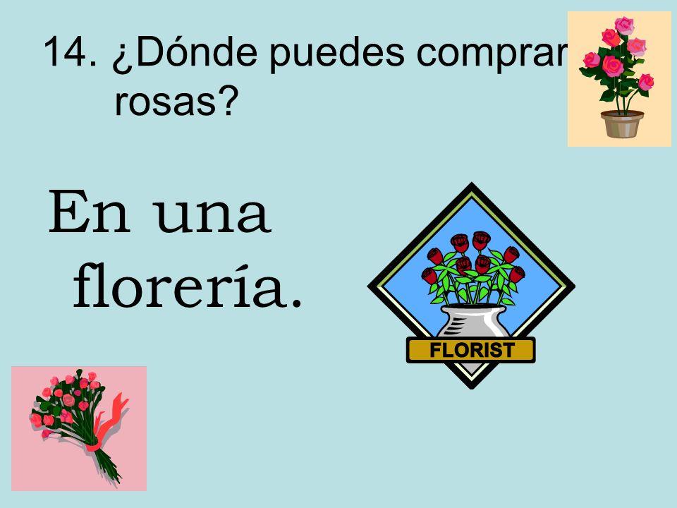 14. ¿Dónde puedes comprar rosas? En una florería.