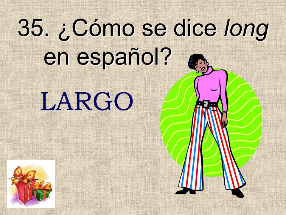35. ¿Cómo se dice long en español? LARGO