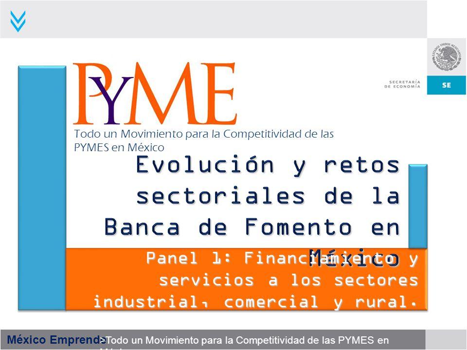 México Emprende >Todo un Movimiento para la Competitividad de las PYMES en México 12 700 MDP GARANTIAS ADICIONALES 2008 30 Mil MDP CREDITO A GENERAR 2008 100 Mil MDP PARA LLEGAR A UNA DERRAMA ACUMULADA 3OO MIL PYMES Y UNA ATENCIÓN A Impactos del Sistema Nacional de Garantías para 2008