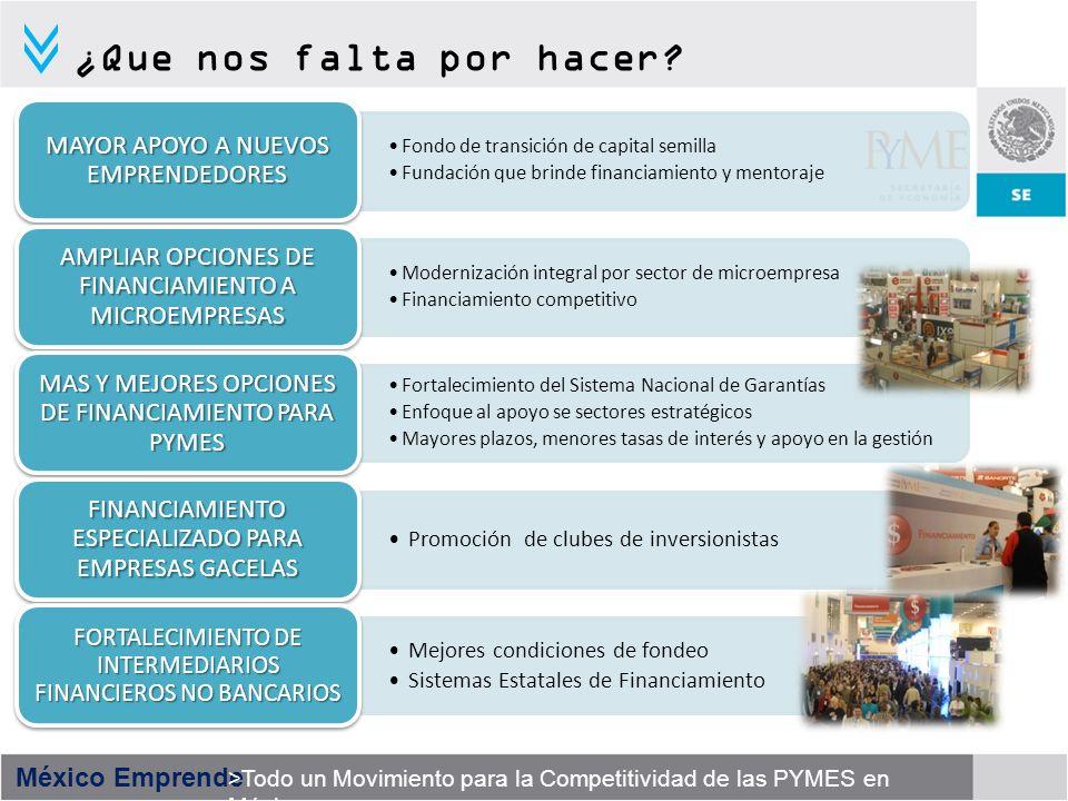 México Emprende >Todo un Movimiento para la Competitividad de las PYMES en México ¿Que nos falta por hacer? Fondo de transición de capital semilla Fun