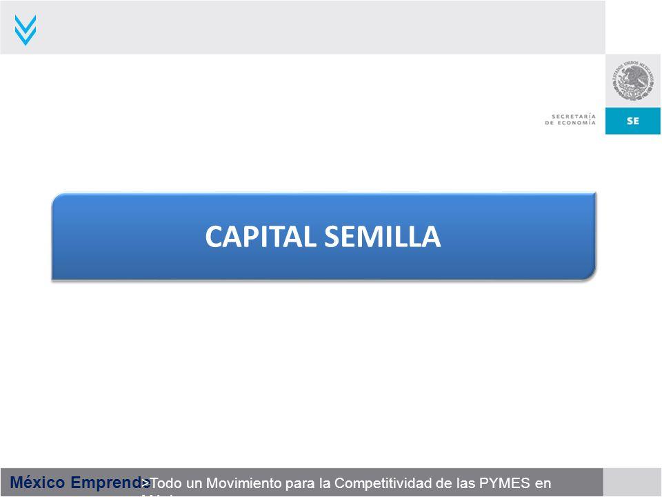 México Emprende >Todo un Movimiento para la Competitividad de las PYMES en México CAPITAL SEMILLA