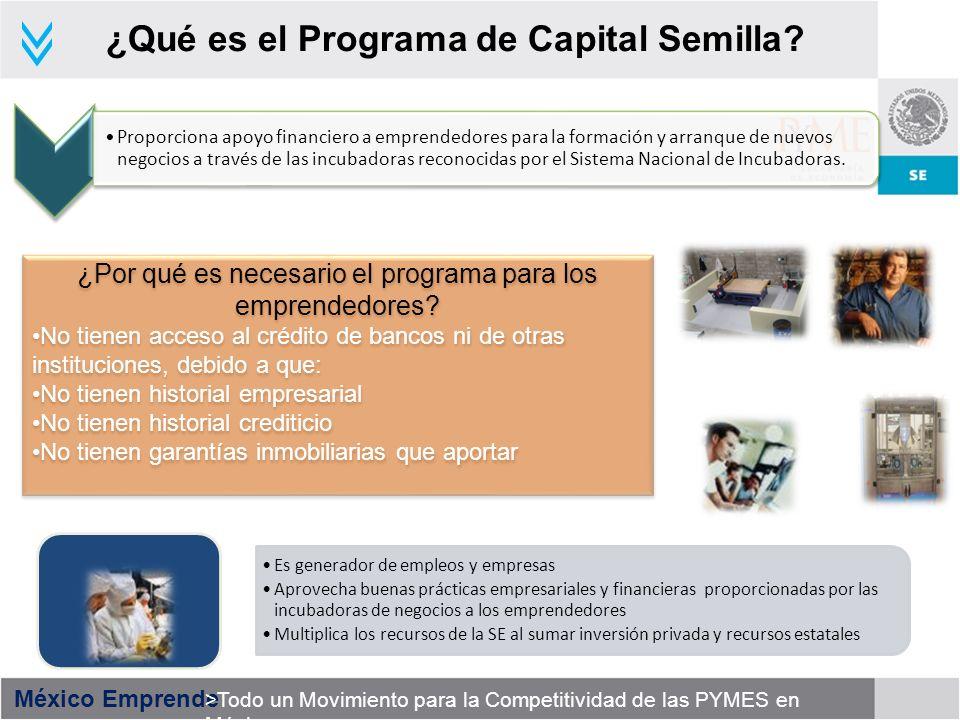 México Emprende >Todo un Movimiento para la Competitividad de las PYMES en México ¿Qué es el Programa de Capital Semilla? ¿Por qué es necesario el pro