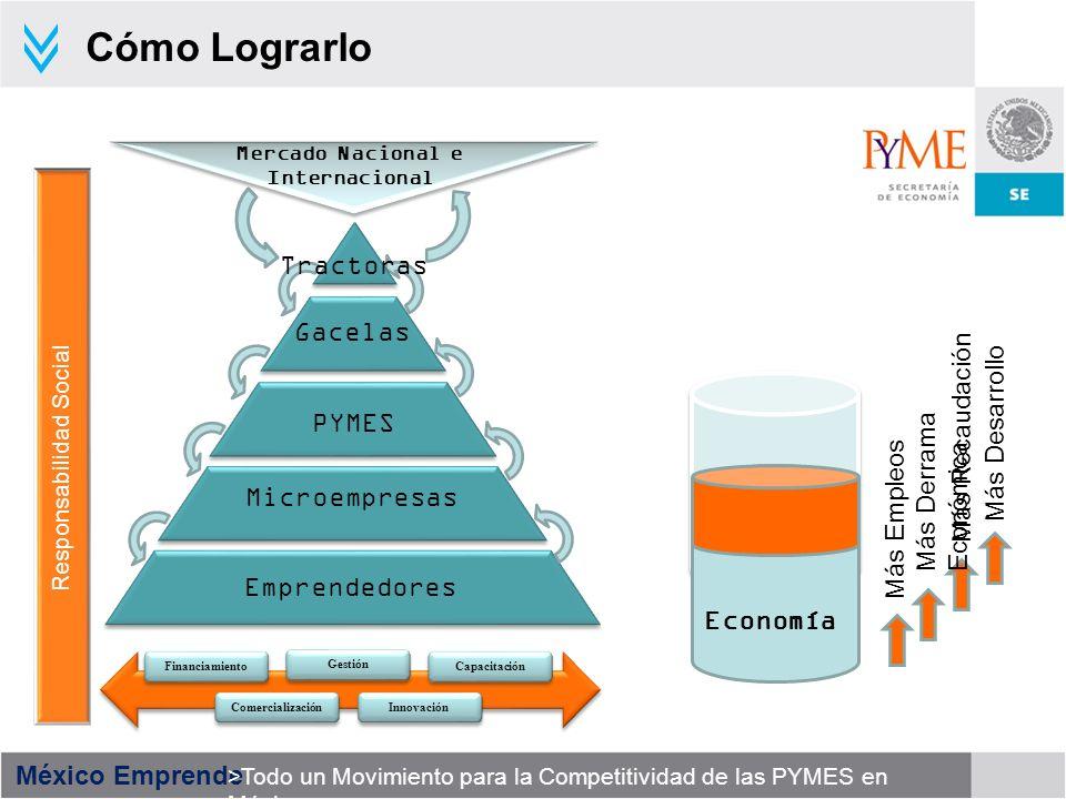 México Emprende >Todo un Movimiento para la Competitividad de las PYMES en México 16 428 Extensionistas Vigentes 35,625 MIPYMES Atendidas 198,760 Empleos Conservados 32 entidades Cobertura Desarrollar y fortalecer la Red actual de Extensionismo Financiero, mediante una atención especializada por segmento.