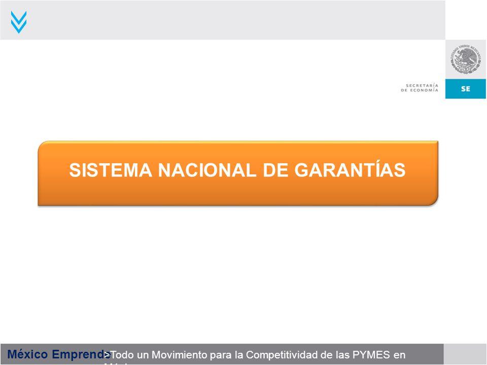 México Emprende >Todo un Movimiento para la Competitividad de las PYMES en México SISTEMA NACIONAL DE GARANTÍAS