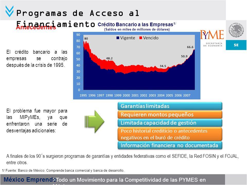 México Emprende >Todo un Movimiento para la Competitividad de las PYMES en México El crédito bancario a las empresas se contrajo después de la crisis