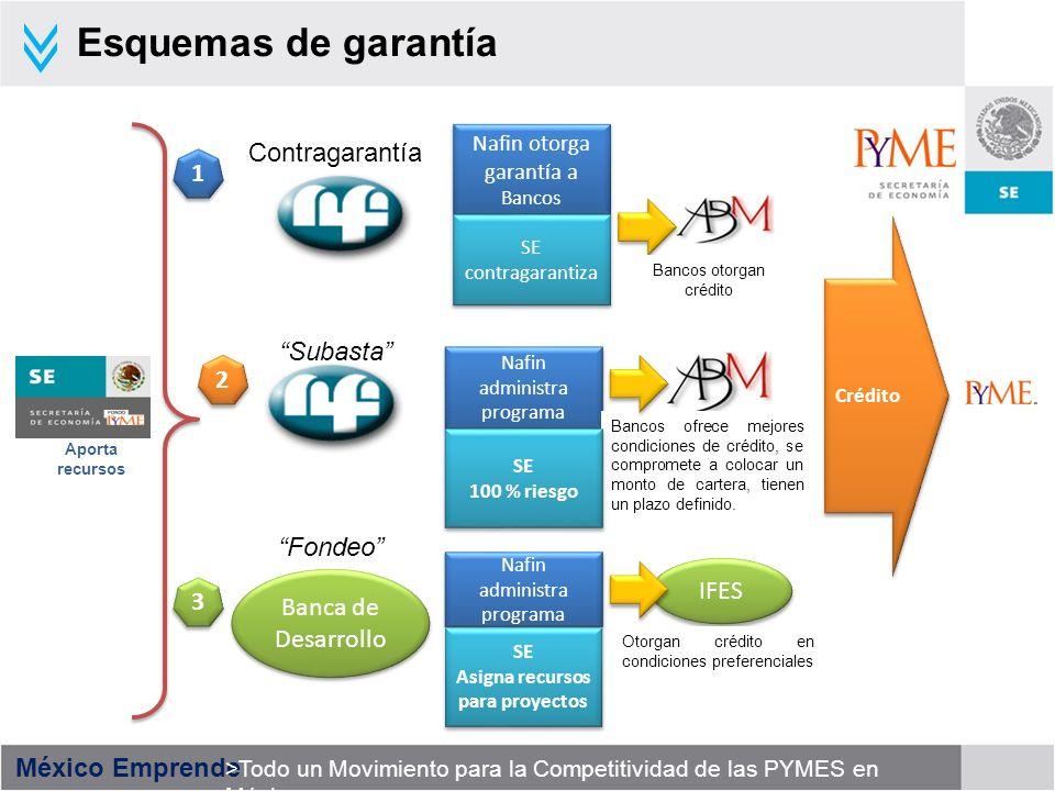 México Emprende >Todo un Movimiento para la Competitividad de las PYMES en México Sistema Nacional de Garantías Aportación total 2,132 millones de pesos Aportaciones de la SE al Sistema Nacional de Garantías 2001 - 2007 Canalizados a programas Emergentes