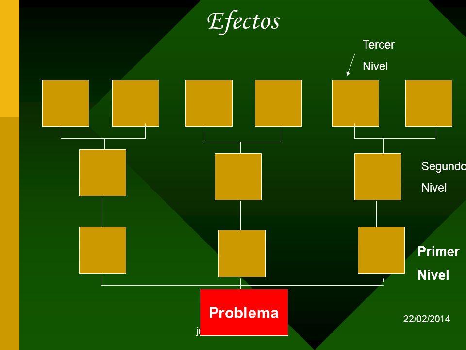 jmirandaf/2013 Efectos Problema Primer Nivel Segundo Nivel Tercer Nivel 22/02/2014